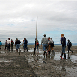 In the Mud Flats