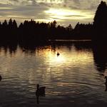 Stanley Park, BC